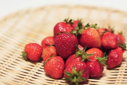 Berry_5