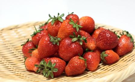 Berry1